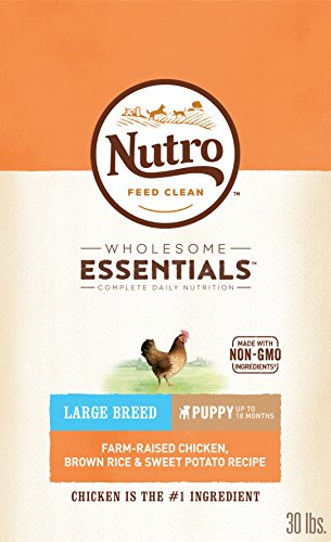 NUTRO WHOLESOME ESSENTIALS Natural Puppy Large Breed Dry Dog Food Farm-Raised Chicken, Brown Rice & Sweet Potato Recipe,...