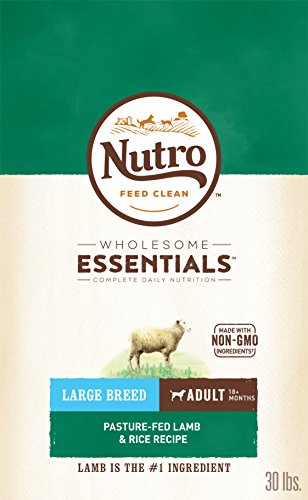 NUTRO Wholesome Essentials Natural Adult Dry Dog Food for Large Breeds