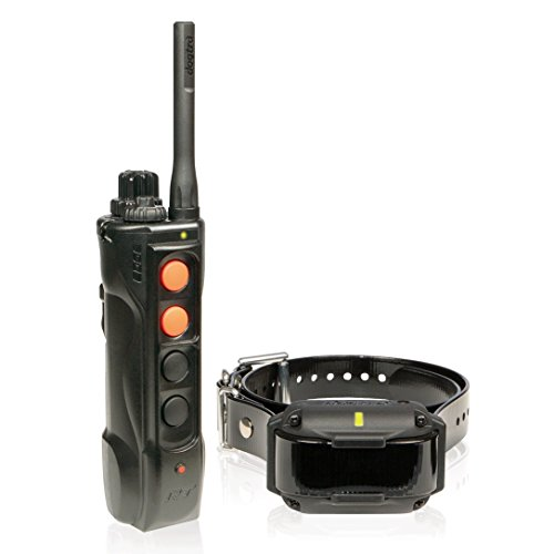 Dogtra Edge RT Long Range High-Output 1-Mile Waterproof 3-Dog Expandable Remote Dog Training E-Collar with Combination...