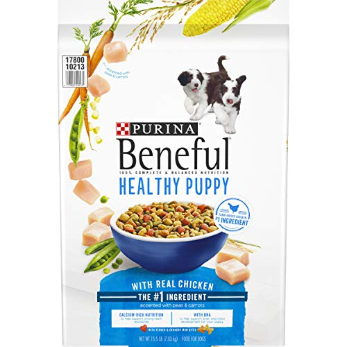 Purina Beneful Dry Puppy Food, Healthy Puppy With Real Chicken - 15.5 lb. Bag
