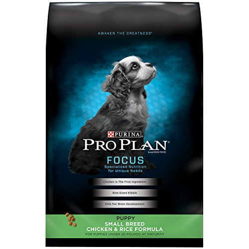 Purina Pro Plan High Protein Small Breed Dry Puppy Food; FOCUS Chicken & Rice Formula - 6 lb. Bag