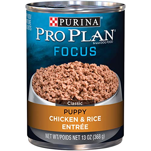 Purina Pro Plan Pate Wet Puppy Food; FOCUS Chicken & Rice Entree - 13 oz. Can (pack of 12)