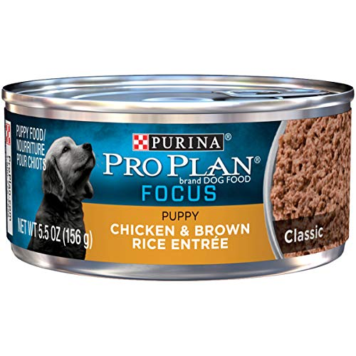 Purina Pro Plan Pate Wet Puppy Food, FOCUS Classic Chicken & Brown Rice Entree - (24) 5.5 oz. Cans