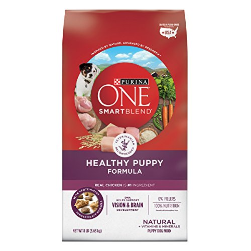 Purina ONE Natural Dry Puppy Food, SmartBlend Healthy Puppy Formula - 8 lb. Bag