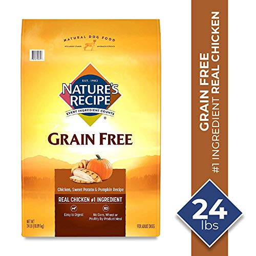 Nature's Recipe Grain Free Chicken, Sweet Potato & Pumpkin Recipe Dry Dog Food, 24 Pounds, Easy to Digest