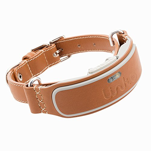 LINK AKC Smart Dog Collar - GPS Location Tracker, Activity Monitor, and More, Leather Medium (KITTN02)