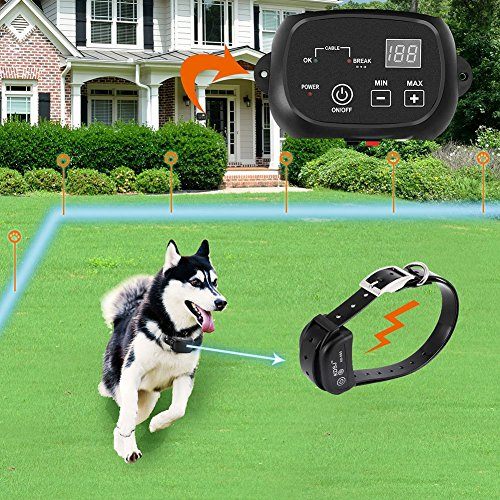 Best Wireless Dog Fence Reviews In 2019 Electric