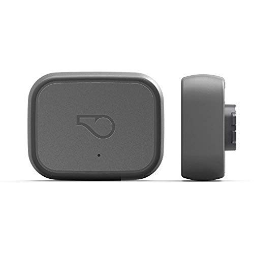 Whistle 3 / GPS Pet Tracker & Activity Monitor / Grey