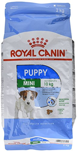 Royal Canin Mini Dog Junior (2kg)