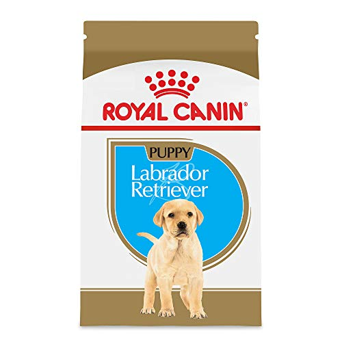 Royal Canin Labrador Retriever Puppy Breed Specific Dry Dog Food, 30 lb. bag