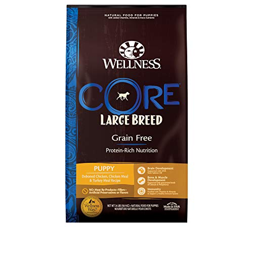Wellness Natural Pet Food CORE Natural Grain Free Dry Puppy Food, Large Breed Puppy, 24-Pound Bag