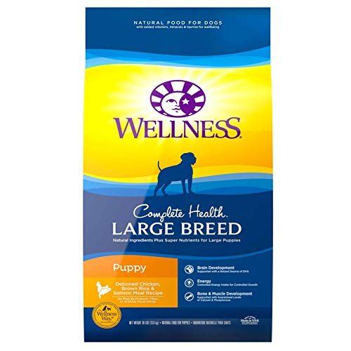 Wellness Natural Pet Food 89115 Complete Health Natural Dry Large Breed Puppy Food, Chicken, Salmon & Rice, 30-Pound Bag