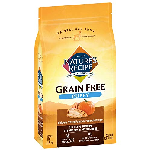 Nature's Recipe Grain Free Large Breed Dry Dog Food, Chicken, Sweet Potato & Pumpkin Recipe, 4 Pounds, Easy to Digest
