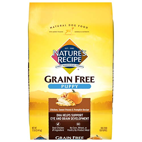 Nature's Recipe Grain Free Large Breed Dry Dog Food, Chicken, Sweet Potato & Pumpkin Recipe, 12 Pounds, Easy to Digest
