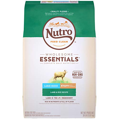 NUTRO WHOLESOME ESSENTIALS Puppy Large Breed Natural Dry Dog Food Lamb & Rice Recipe, 30 lb. Bag