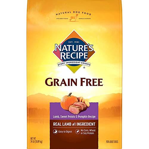 Nature's Recipe Grain Free Dry Dog Food, Lamb, Sweet Potato & Pumpkin Recipe, 24 Pounds, Easy to Digest