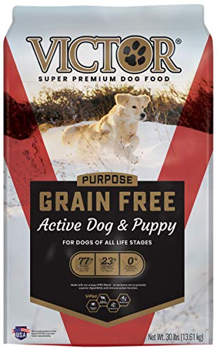VICTOR Dog Food Purpose - Grain Free Active Dog & Puppy, Dry Dog Food (2473)