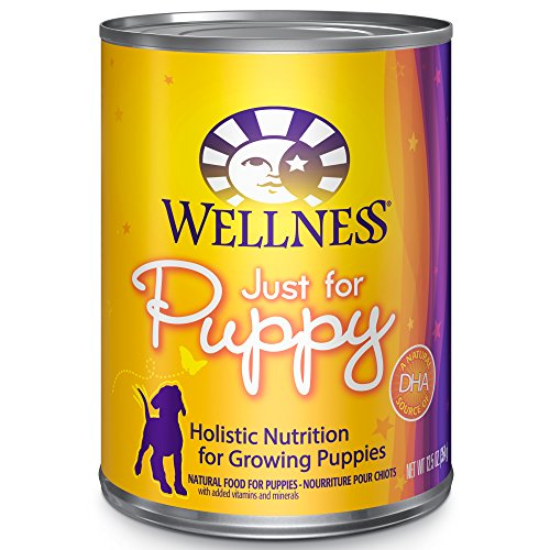 Wellness Complete Health Just for Puppy Canned Dog Food, 12.5 Ounces, Pack of 12