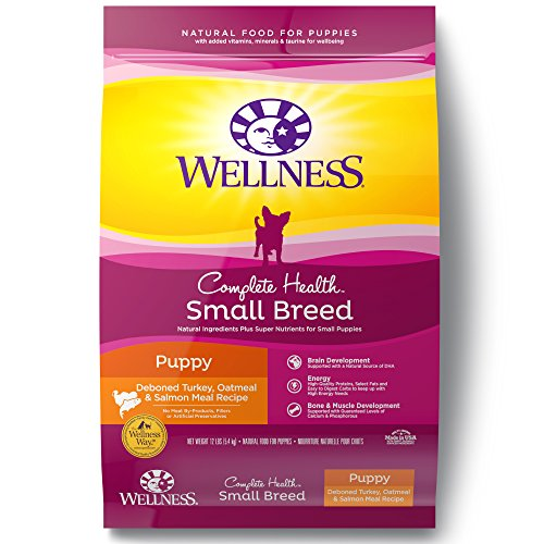 Wellness Natural Pet Food Complete Health Natural Dry Small Breed Puppy Food, Turkey, Salmon & Oatmeal, 12-Pound Bag
