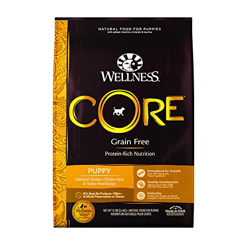 Wellness CORE Natural Grain Free Dry Dog Food, Puppy, 12-Pound Bag