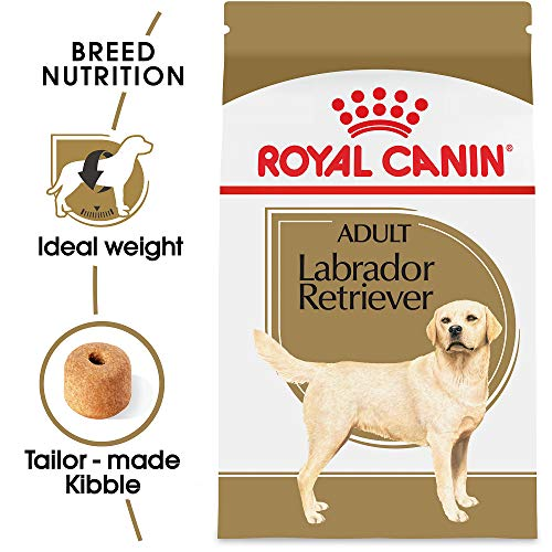 Royal Canin Labrador Retriever Adult Breed Specific Dry Dog Food, 30 lb. bag