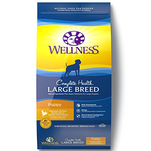 Wellness Complete Health Natural Dry Large Breed Puppy Food, Chicken, Salmon & Rice, 30-Pound Bag