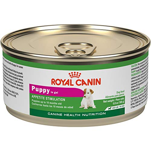 Royal Canin Canine Health Nutrition Puppy In Gel Canned Dog Food, 5.8 oz Can (Pack of 24)