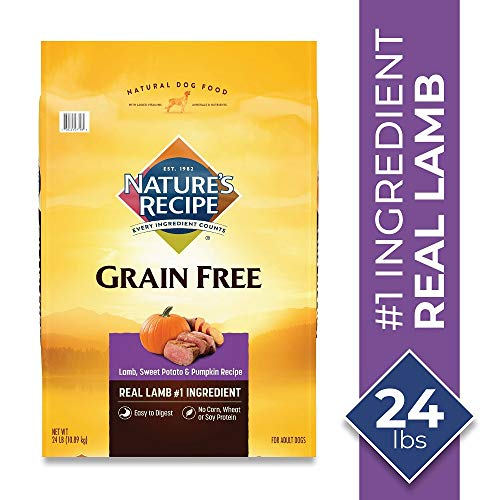 Nature's Recipe Easy to Digest Dry Dog Food, Lamb, Sweet Potato & Pumpkin Recipe, 24 Pounds, Grain Free