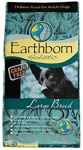 Earthborn Holistic Large Breed Grain-Free Dry Dog Food