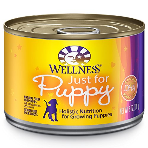 Wellness Complete Health Natural Wet Canned Puppy Food, Chicken & Salmon, 6-Ounce Can (Pack Of 24)