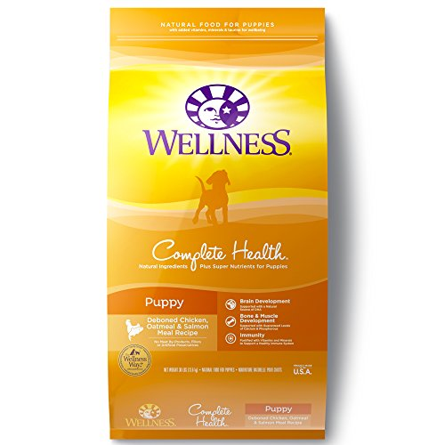 Wellness Complete Health Natural Dry Puppy Food, Chicken, Salmon & Oatmeal, 30-Pound Bag
