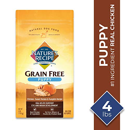 Nature's Recipe Dry Dog Food for Puppies, Chicken, Sweet Potato & Pumpkin Recipe, 4 Pounds, Grain Free
