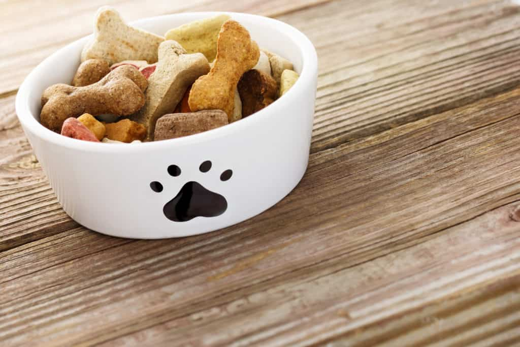 best fromm dry dog food