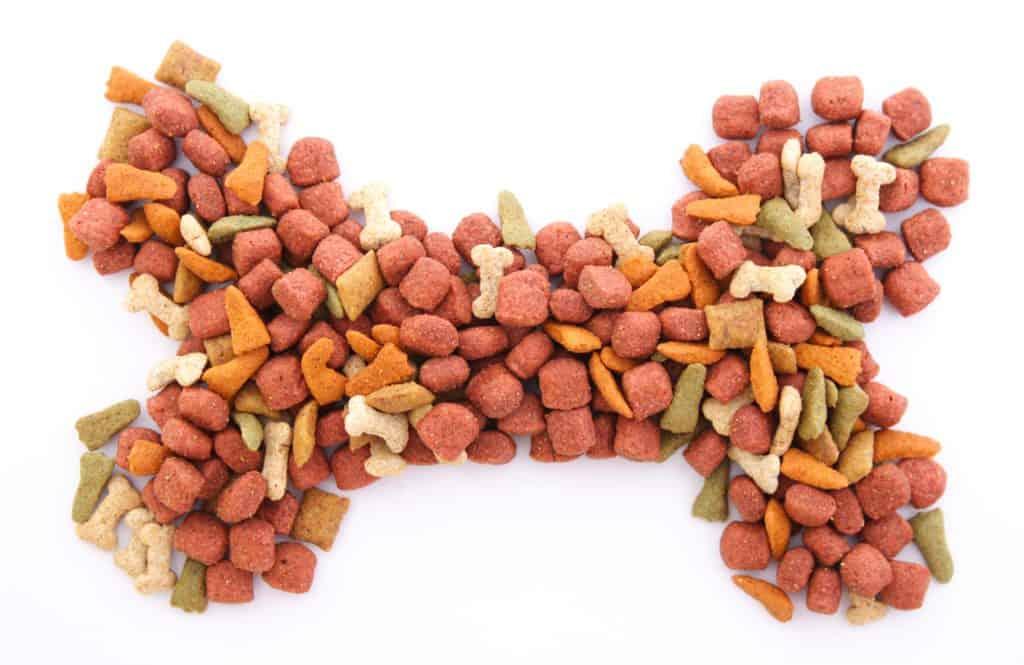 dog food gluten free
