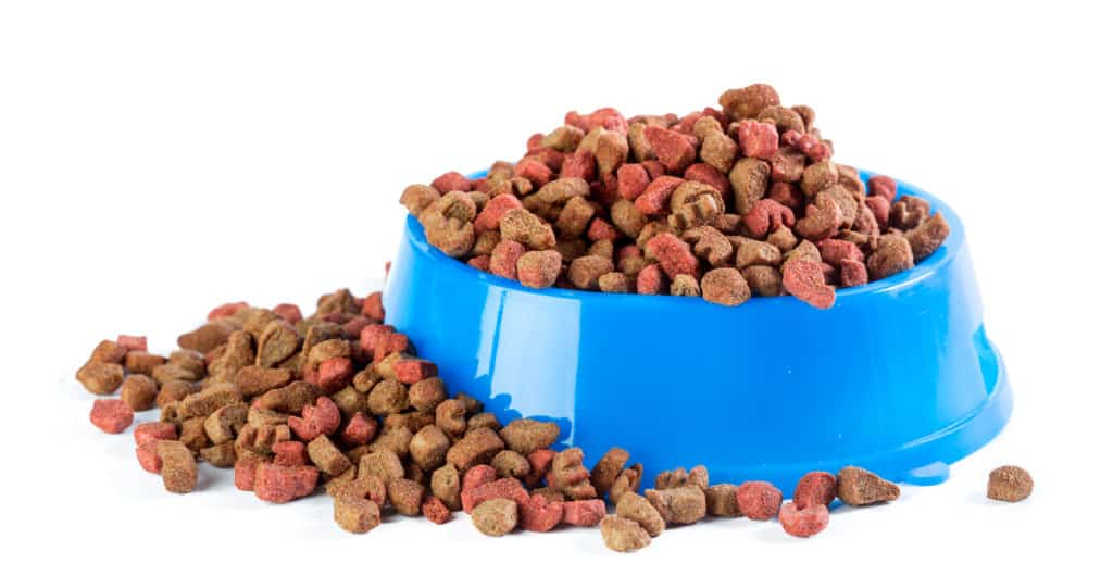 canidae dog food recall