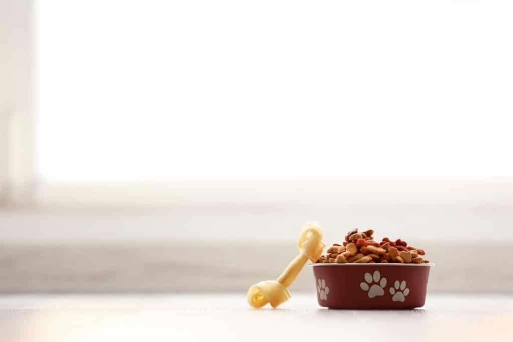 rachael ray dog food recall
